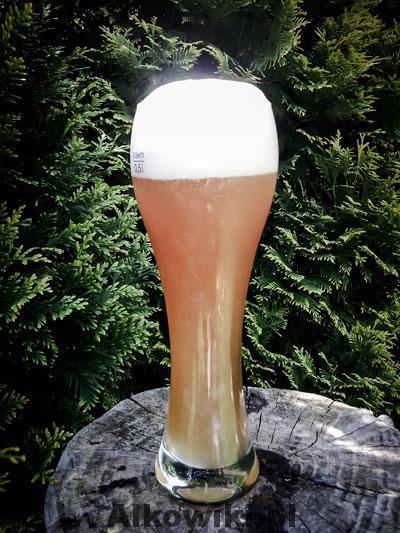 piwo-pszeniczne